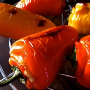 Stuffed Shimla Mirch or coloured peppers stuffed with mashed potatoes and grilled