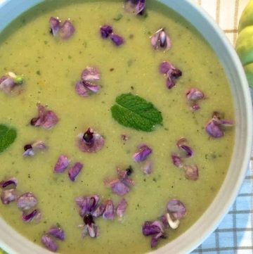 Green Patty Pan Squash Mint Soup with Orange and Hyacinth and Green Capsicum plus a dash of cumin and pepper to spice it up. Delicious, refreshing, easy.