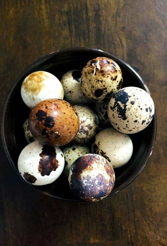A bowl of tiny speckled quail eggs, on a wooden background. Some eggs have black or brown specks on white, some are brown with black specs